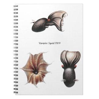 Cuaderno del calamar del vampiro