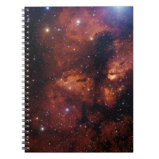 Cuaderno del campo de estrella
