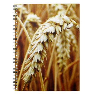 Cuaderno del campo de trigo