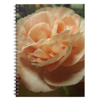 Cuaderno del clavel del melocotón