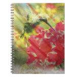 Cuaderno del colibrí