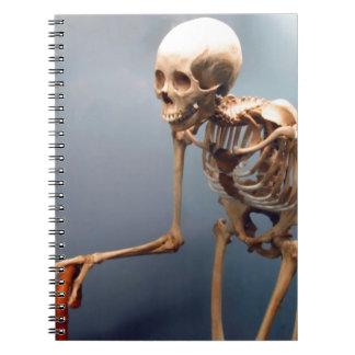 Cuaderno del esqueleto del jorobado