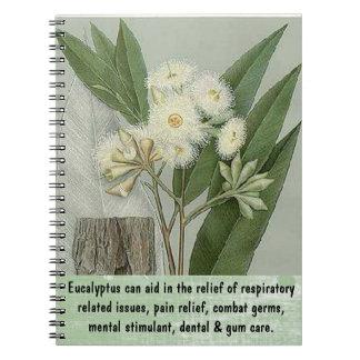 Cuaderno del eucalipto