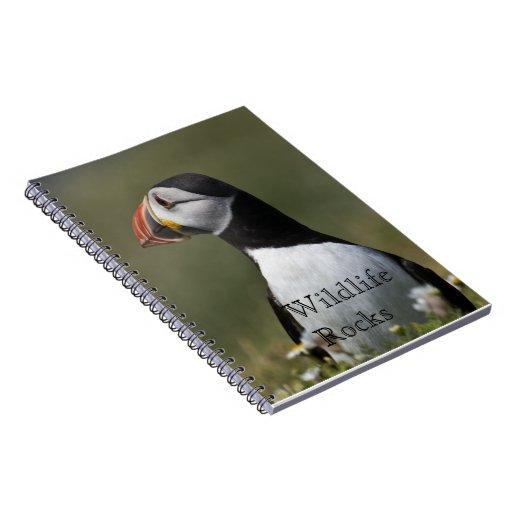 Cuaderno del frailecillo atlántico