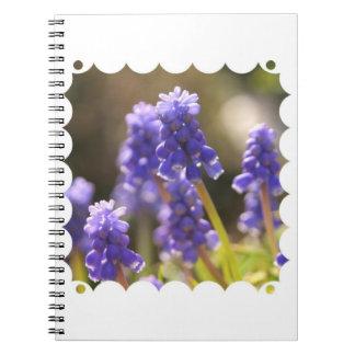 Cuaderno del jacinto de uva
