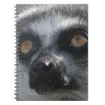 Cuaderno del Lemur del Ringtail