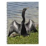 Cuaderno del pájaro del Anhinga