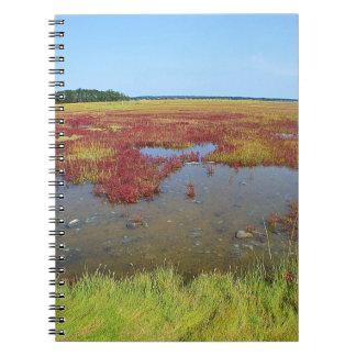 Cuaderno del pantano de Hammonasset