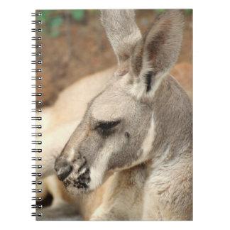 Cuaderno del perfil del canguro