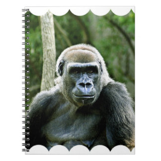 Cuaderno del perfil del gorila
