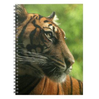Cuaderno del perfil del tigre