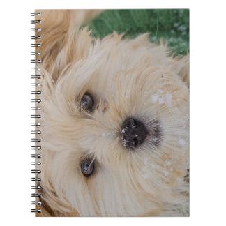 Cuaderno del perrito del copo de nieve