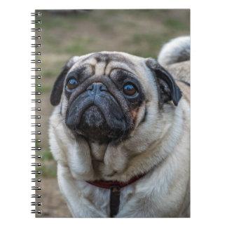 Cuaderno del perro del barro amasado