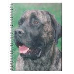 Cuaderno del perro del mastín