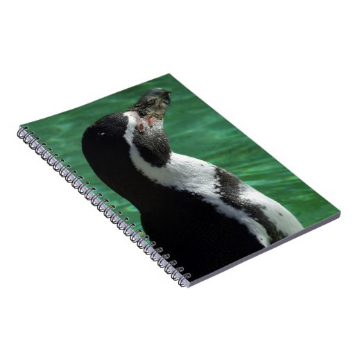 Cuaderno del pingüino