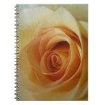 Cuaderno del rosa amarillo