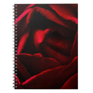 Cuaderno del rosa rojo