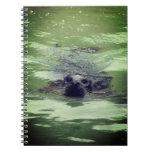 Cuaderno del sello