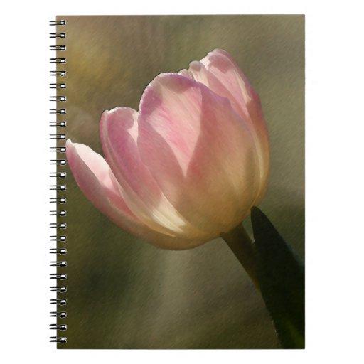 Cuaderno del tulipán