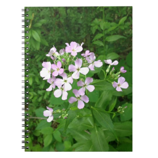 Cuaderno del Wildflower