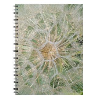 Cuaderno derecho/zurdo del extracto de la planta d