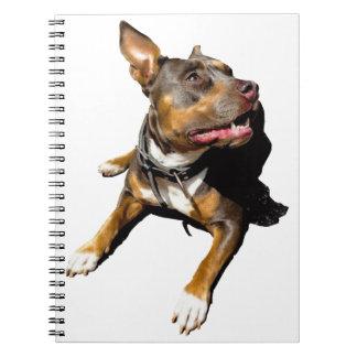 Cuaderno - Diseño Jaïka