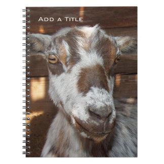 Cuaderno enano de la cabra