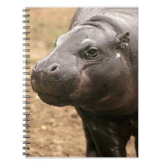 Cuaderno enano del hipopótamo