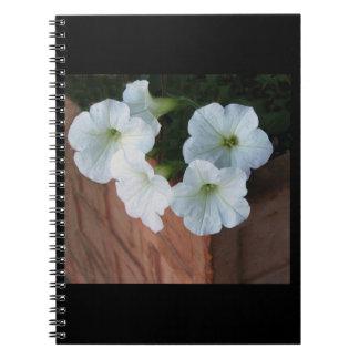 Cuaderno espiral con las petunias blancas preciosa