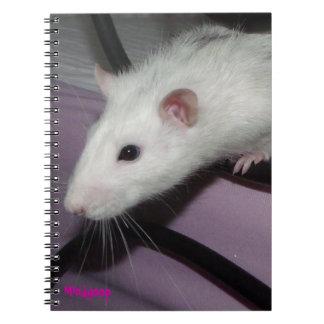 cuaderno espiral de la rata fornida