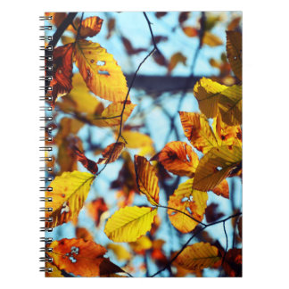 Cuaderno espiral de las hojas de otoño