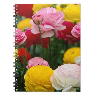 Cuaderno espiral de los claveles coloridos