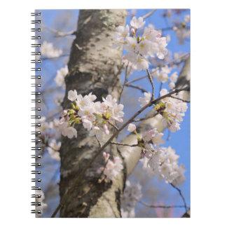 Cuaderno espiral del tronco de la cereza