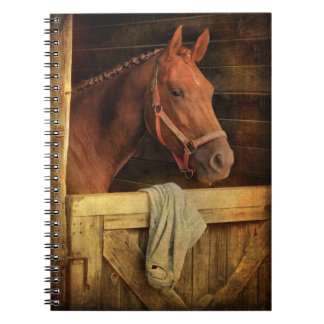 Cuaderno excelente del caballo