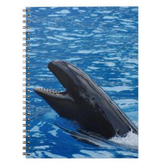 Cuaderno falso de la orca