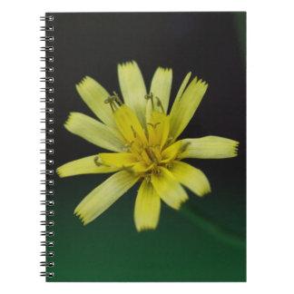 Cuaderno floral del Wildflower del amarillo de la