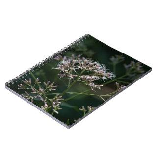 Cuaderno floral del Wildflower púrpura de la mala