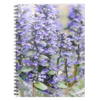 Cuaderno floreciente del Ajuga