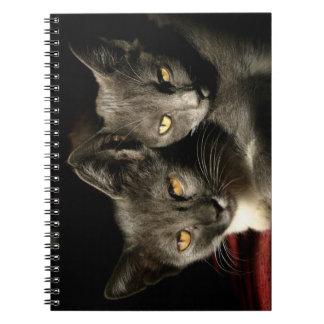 Cuaderno gris de la foto de la foto de los gatos