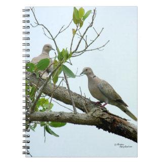 Cuaderno gris de las palomas de la mañana