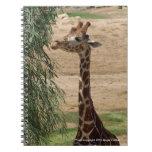 Cuaderno hambriento de la jirafa