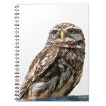 Cuaderno hermoso de la foto del pájaro del pequeño