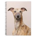 Cuaderno hermoso de la foto del perro de Whippet,