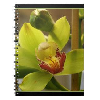 Cuaderno hermoso de la orquídea
