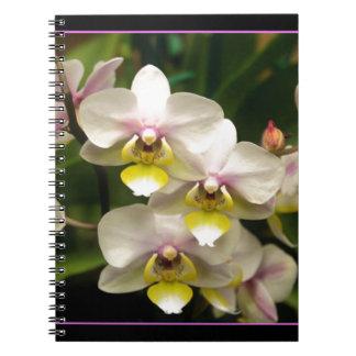 Cuaderno hermoso de las orquídeas