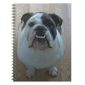 Cuaderno inglés del perrito del dogo