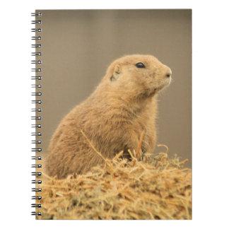 Cuaderno lindo de Aint I del perro de las praderas