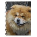 Cuaderno lindo del perro chino de perro chino