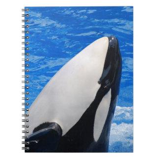 Cuaderno - modificado para requisitos particulares