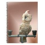 Cuaderno moluqueño del Cockatoo